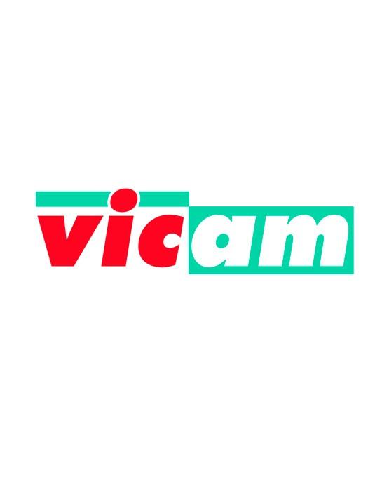 VICAM TOYS